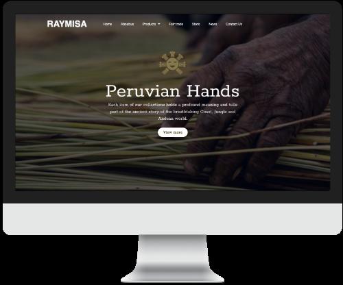www.raymisa.com